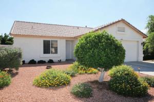 Downloadable Photos Mesa AZ-small-002-IMG 9693-666x444-72dpi